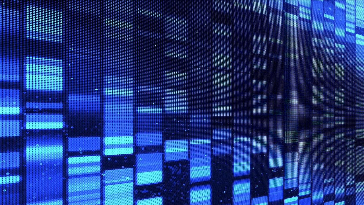 Corso di Formazione Genomic Portfolio Director - EuroFormation Scuola di Formazione Digitale e Corsi Online