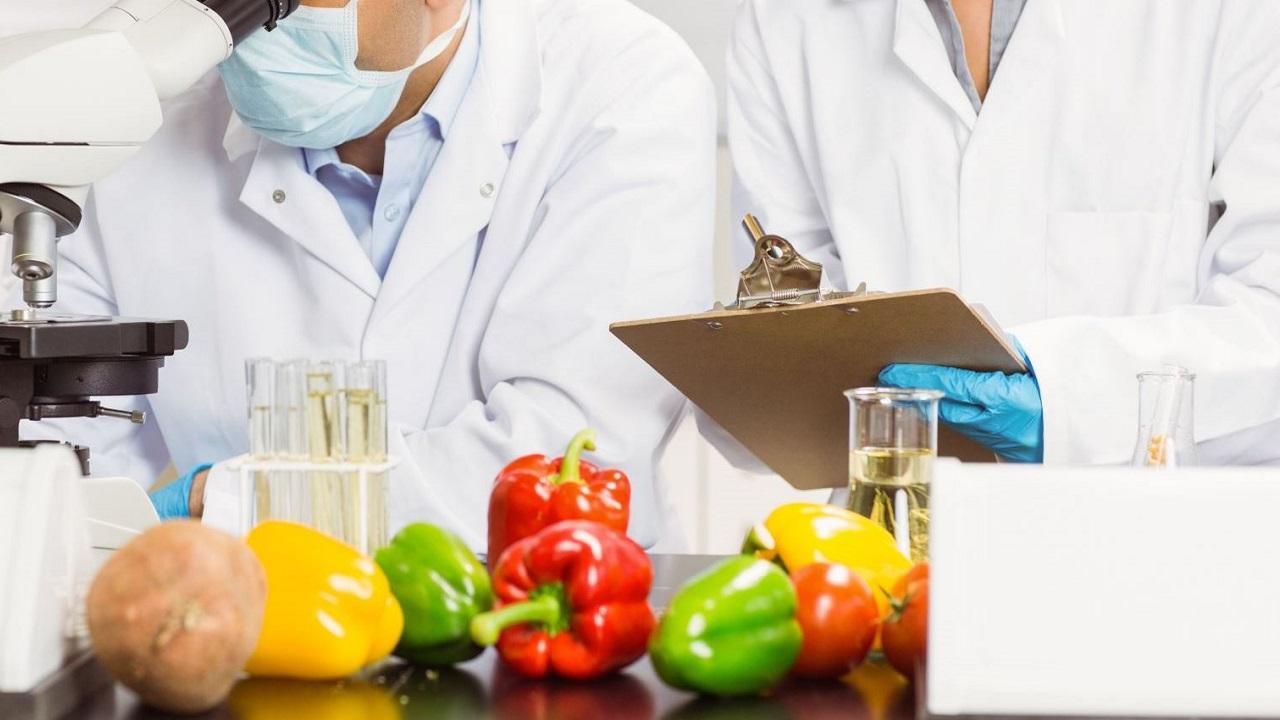 Corso di Formazione HACCP Alimentarista - EuroFormation Scuola di Formazione Digitale e Corsi Online