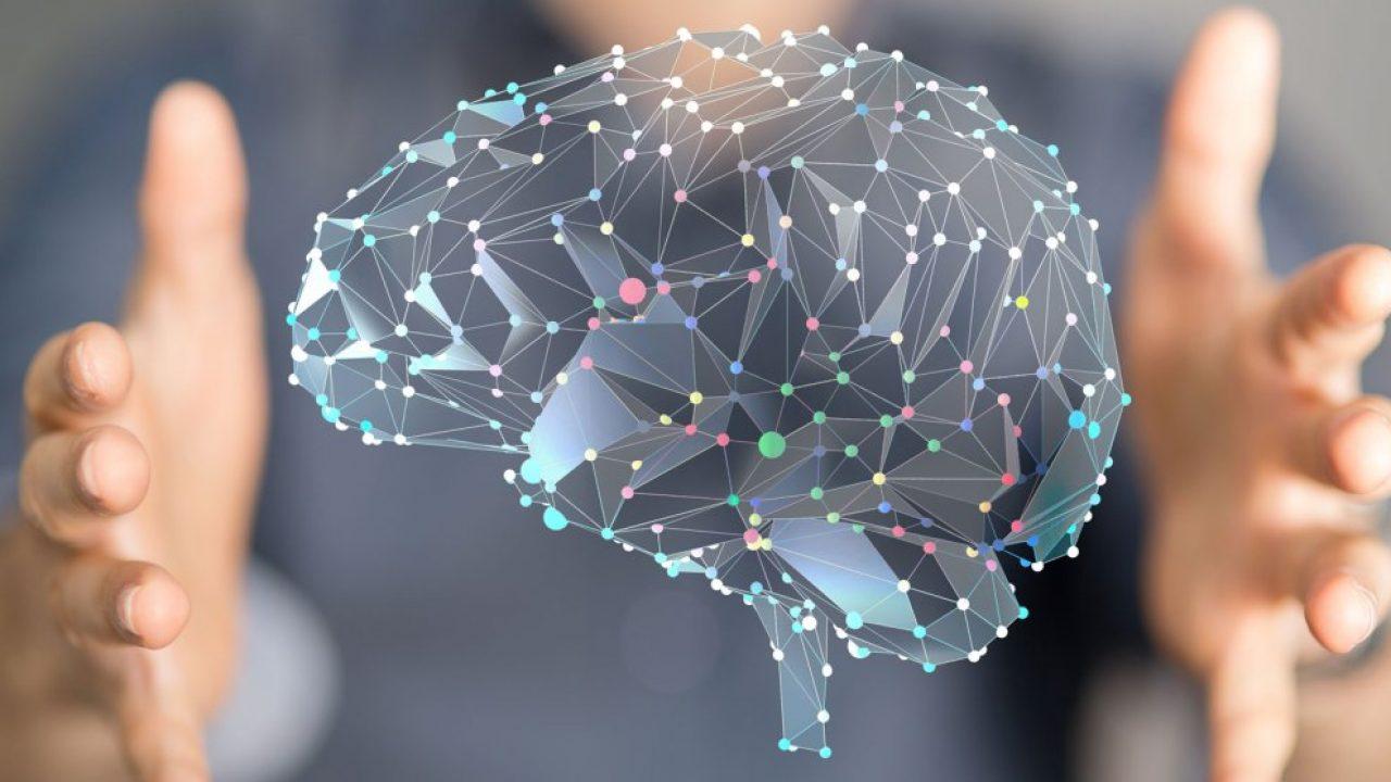 Corso di Formazione Neuromarketing Web - EuroFormation Scuola di Formazione Digitale e Corsi Online