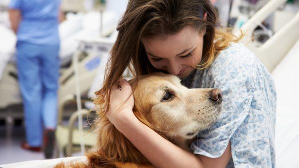 Corso di Formazione Operatore Pet Therapy - EuroFormation Scuola di Formazione Digitale e Corsi Online