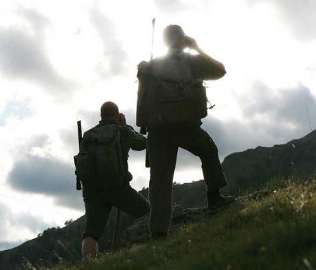 Lavorare come Guarda caccia